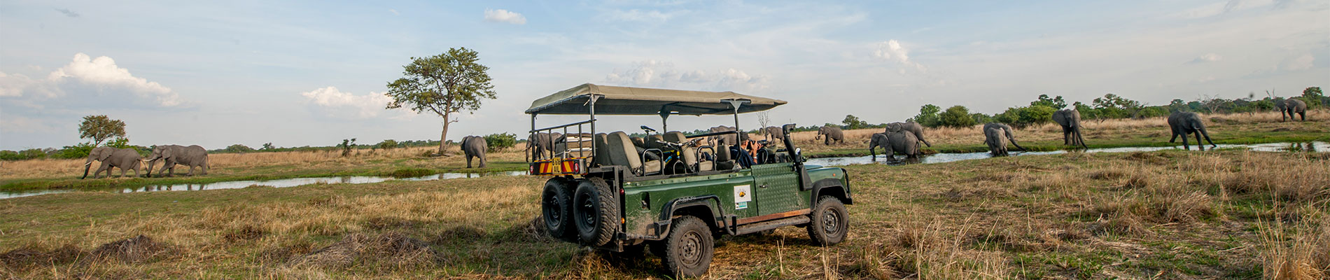 Authentic Delta & Bush - Comfort Level Safari